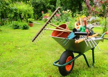Devis entretien de jardin